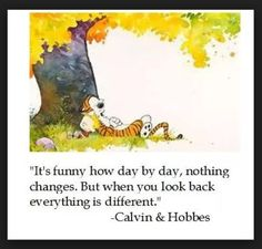 656935 19 Calvin and Hobbes life lessons (20 photos)