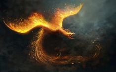 Reborn by *telthona on deviantART; The Mythical Phoenix of Egyptian and Roman Mythology is reborn in the Fire of Life on its Sacred and Secret Holy Birthing Grounds. Fantasy Pictures, Fantasy Images, Fantasy Art, Fantasy Creatures, Mythical Creatures, Mythological Creatures, Samhain, Phoenix Wallpaper, Phoenix Artwork