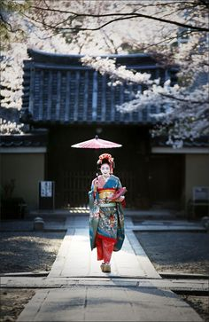 See the softer side of Japan