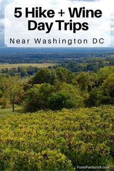 These 5 Virginia hike and wine day trips close to Washington DC combine two favorite things& chance to enjoy nature, and a delicious glass of local wine. Hiking In Virginia, Temecula Wineries, Alexandria Virginia, Virginia Wineries, Virginia Is For Lovers, Dc Travel, Future Travel, Oh The Places You'll Go, Day Trips