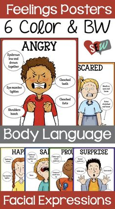 6 Posters in Color and Black and White that show how a person's body language and facial expressions change with different emotions. These can be useful for counseling, pragmatics, and other classroom uses.  Emotions Included: Happy, Angry, Surprise, Sad, Proud, Scared.   Social Emotional Workshop