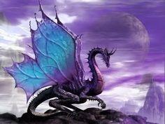 butterfly dragon
