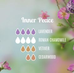 Diffuser blend for a inner peace