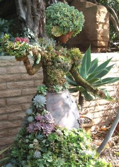 """Succulent People"", created by Pat Hammer, Director of Operations of the San Die. ""Succulent People"", created by Pat Hammer, Director of Operations of the San Diego Botanical Garden. Image by Carey Garden Whimsy, Diy Garden, Dream Garden, Garden Art, Garden Landscaping, Cacti And Succulents, Planting Succulents, Night Garden, Cactus Y Suculentas"
