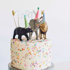 4 Easy and Cute Animal Themed Cakes for a jungle themed birthday party Safari Birthday Cakes, 2nd Birthday Party Themes, Themed Birthday Cakes, First Birthday Cakes, 1st Boy Birthday, Themed Cakes, First Birthday Parties, Easy Kids Birthday Cakes, Jungle Theme Cakes