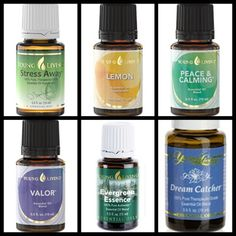 Aromatherapy for Dogs - Young Living Essential Oils -