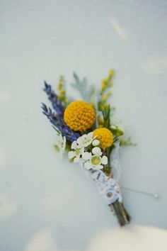 A little sprig of white waxflower blossom and yellow billy buttons makes an boutonniere Wax Flowers, Pretty Flowers, Fall Bouquets, Wedding Bouquets, Yellow Bouquets, Floral Wedding, Wedding Flowers, Yellow Wedding, Lace Wedding