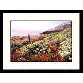 Found it at Wayfair - Landscapes 'Lush Landscape Big Sur Coast, California' Framed Photographic Print
