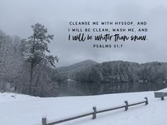 Cleanse Me, Bible Verses Quotes, Psalms, Outdoor, Outdoors, Scriptures, Outdoor Games, Outdoor Life
