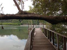 get the power >>view point <<Akanak Resort