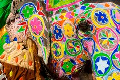 Painted Elephant at Jaipur