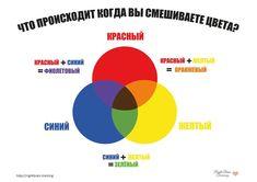 Цветовой круг - Занятия для раннего развития детей RightBrain.Training