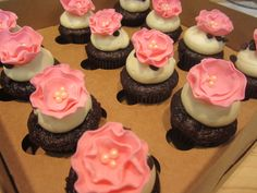 These were my cupcakes