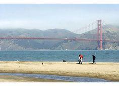 Honeymoon in my Hometown: San Francisco  tips