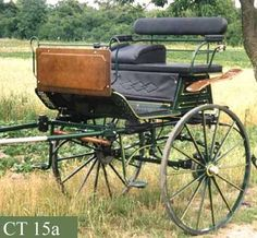 Coyaltix Carriages  A little gig cart for a Friesian to pull? I think yes to Sunday drives!