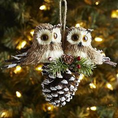Natural Owls on Pinecone Tree ornament - pier 1