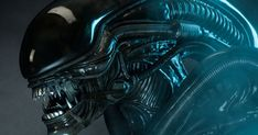 Ridley Scott Claims Alien: Covenant Will Receive a Hard R Rating Hr Giger, Alien Vs Predator, Alien Covenant, The Covenant, Xenomorph, Marine Gear, Alien 1979, Alien Alien, Aliens Movie