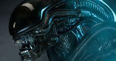 Ridley Scott Claims Alien: Covenant Will Receive a Hard R Rating Hr Giger, Alien Vs Predator, Alien Covenant, The Covenant, Xenomorph, Marine Gear, Alien 1979, Alien Alien, Aliens Movie