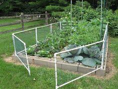 Fenced PVC Raised Garden Bed Cedar blocks
