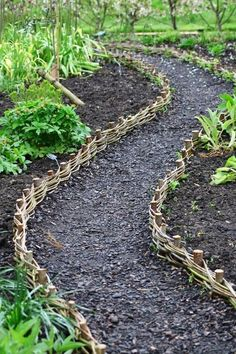 Garden Edging, Garden Borders, Garden Paths, Garden Landscaping, Potager Garden, Fence Garden, Garden Bed, Landscaping Ideas, Garden Tips