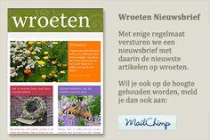 Nieuwsbrief wroeten Fruit Garden, Vegetable Garden, Hydrangea, Vegetables, November, Gardening, Garden, Compost, November Born