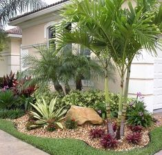 50 Florida Landscaping Ideas Front Yards Curb Appeal Palm Trees_6 #LandscapeFrontYard  #LandscapingFrontYard