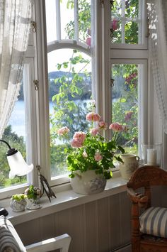 A pot of geraniums in a sunny window always cheers me. And reminds me of my sweet Grandma Cora.