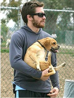 Nothing hotter than a guy and his dog, especially when it's Jake Gyllenhaal holding a puggle Puggle Puppies, Cute Puppies, Cute Dogs, Jake Gyllenhaal, Matthew Mcconaughey, Cute Gay, Friend Photos, Pug Life, Hottest Photos