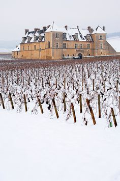 Chateau Clos de Vougeot in the snow.\ Gorgeous and their wine ain't bad either Beaune France, France 4, Clos Vougeot, Wine Vineyards, Ardennes, Just Dream, In Vino Veritas, Italian Wine, French Chateau