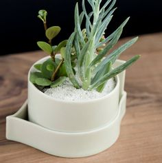 Hand built Porcelain Planters for the Modern by taylorceramics