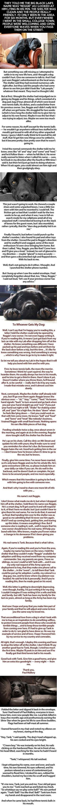 Be warned this WILL make you cry. Amazing people like this deserve amazing dogs like this. What a beautiful but sad story.