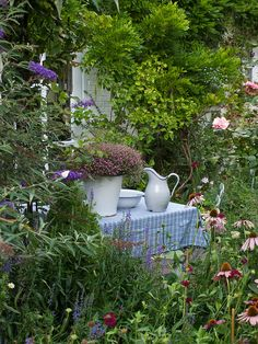 Lovely cottage garden! / repinned on toby designs