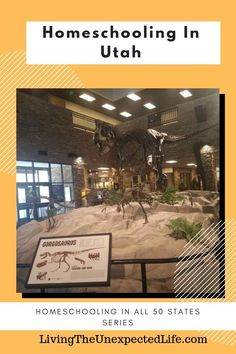 Homeschooling in Utah Our family has moved around a lot over the years. Since my Homeschool Blogs, Homeschooling, Great Places, Places To Go, Success Principles, Natural Curiosities, Historical Landmarks, San Diego Zoo, Local Library