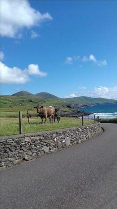 St. Finian's Bay, Ballinskelligs, Co. Kerry, Ireland #Ballinskelligs #SouthKerry #IrishHolidays