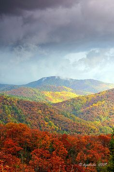 Skyline Drive in Shenandoah National Park, Virginia; photo by Dyoshida