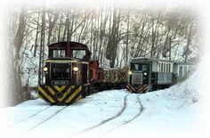 Lilla-napi vonatozás - Miskolc színei / Esemény, rendezvény Train, Outdoor, Outdoors, Outdoor Games, Outdoor Living, Trains