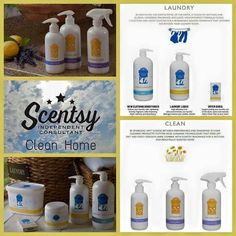 New Scentsy Clean line fall/winter 2015 #scentsbykris
