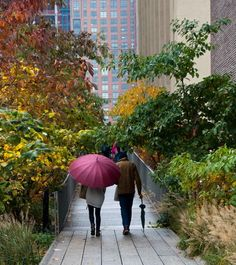 New York City - Falling for the High Line