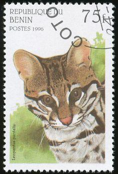 Benin 1996 Wild Cat Stamps
