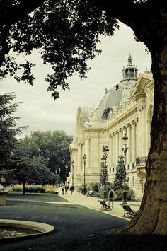 Petit Palais Paris, a beautiful garden in the middle of this museum...