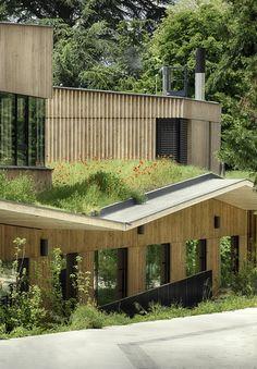 School complex in Rillieux-la-Pape / Tectoniques Architects, Green Roof, CLT, Wood Siding