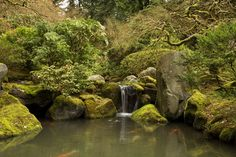 free screensaver wallpapers for japanese garden, 7668 kB - Beck MacDonald