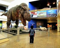 New Mexico Museum of Natural History & Science - Albuquerque, NM