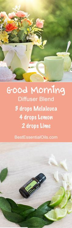 Good Morning doTERRA Diffuser Blend