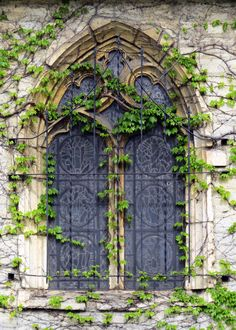 Ivy outlines a stained glass window on Marquette University's St. Joan of Arc Chapel.