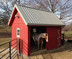Now that is a run in shed! Room for 2 horses with rubber matting for dry footing.