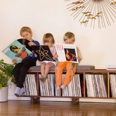 15 Fun And Useful Vinyl Storage Ideas