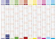 2017 Year calendar in spanish. Elegant annual planner for year 2017.