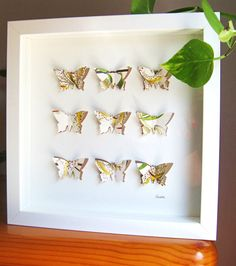 Check out Butterflies / collage / gift idea / present / wall decoration / home decor / wall art / home decor / wedding / love on gosiaandhelena Wedding Decorations, Decor Wedding, Home Decor Wall Art, Presents, Collage, Butterfly, Unique Jewelry, Frame, Handmade Gifts