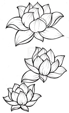Lotus simplified line art